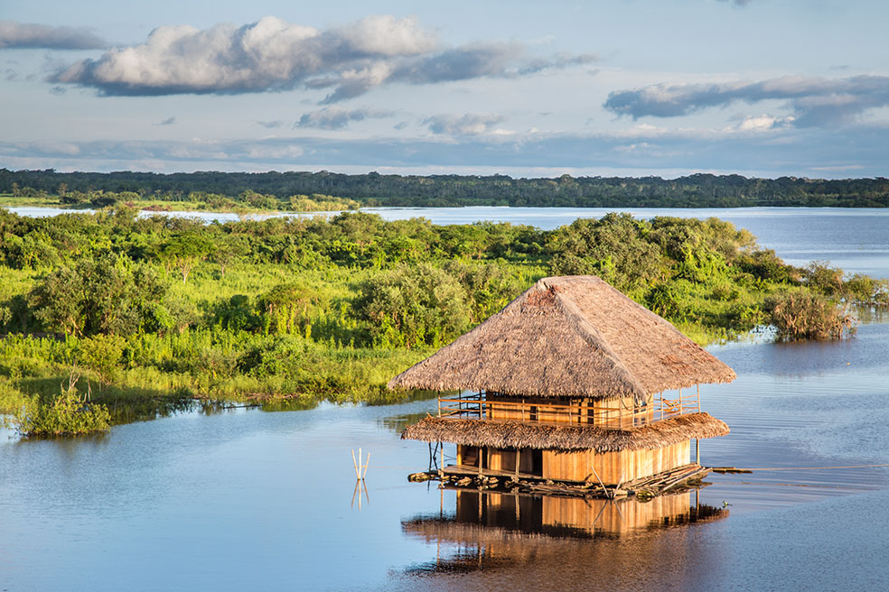 Iquitos, Amazon rainforest, Peru.